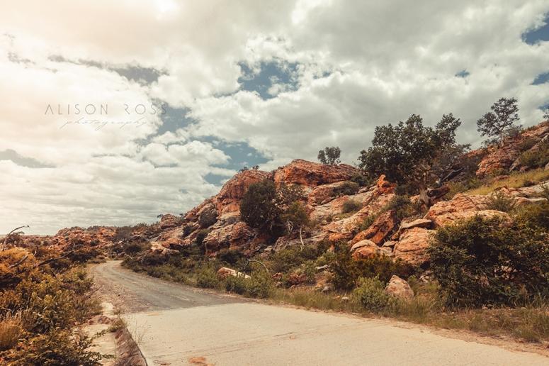 Landscape-6095